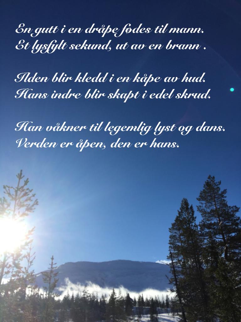 Ordvers, vers, verselinjer, dikt, poesi, poem, ordlek, Iskald skrekk i regnbueglød,  kalde ord , fryser istapper i meg. i drømmenes dal, en gutt i en dråpe fødes til mann, Forfatter R.R. Kile