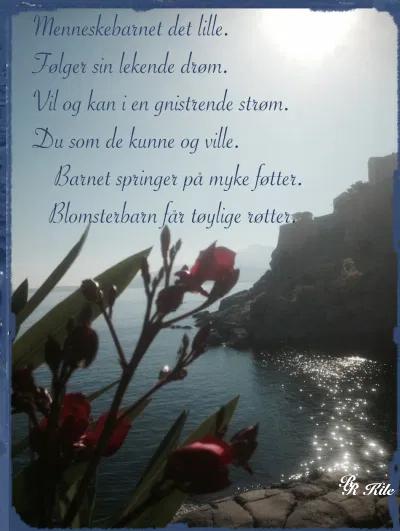 Poesi, Poem, Ordlek, Verselinjer, versemål, hode, hjerte, hånd, å drysse vannperler, vi er mer enn epleskall, syng meg en diamant, være som ei måke er,  blomsterbarn får tøylige røtter,  Forfatter R.R. Kile