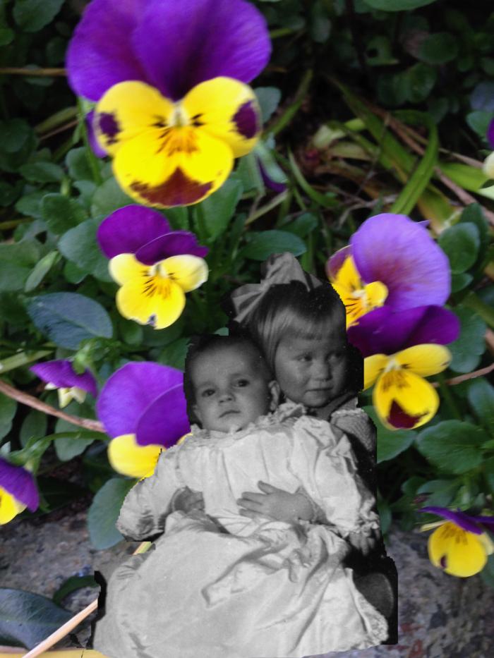 Poem og ord, tåkehav i fløyelsdans, unger og blomster, å danse mobbing under fot og hinke mot en regnbue, ha trollsverd, dikt, vers, forfatter R.R. Kile