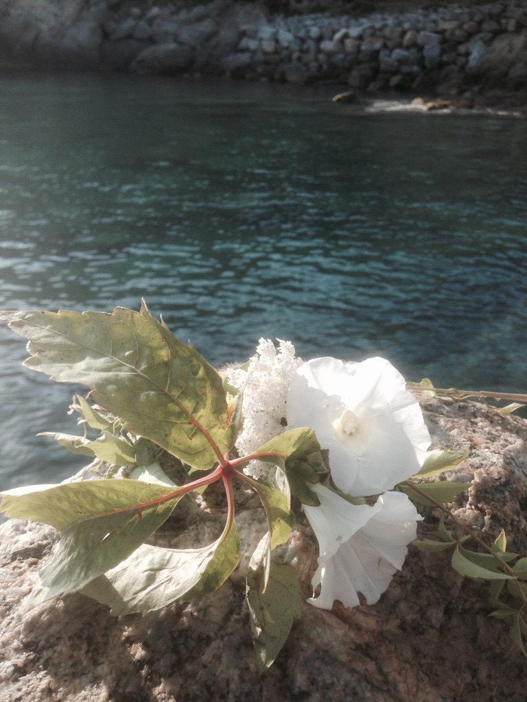 Ordlek og Poesi, vannperler leker i lufta, vinteren har lagt seg flat for den spirende vår, årstidene danser rundt med oss, Dikt, Vers, verselinjer, versemål, ordlek poem, , lyrikk, Forfatter R.R. Kile