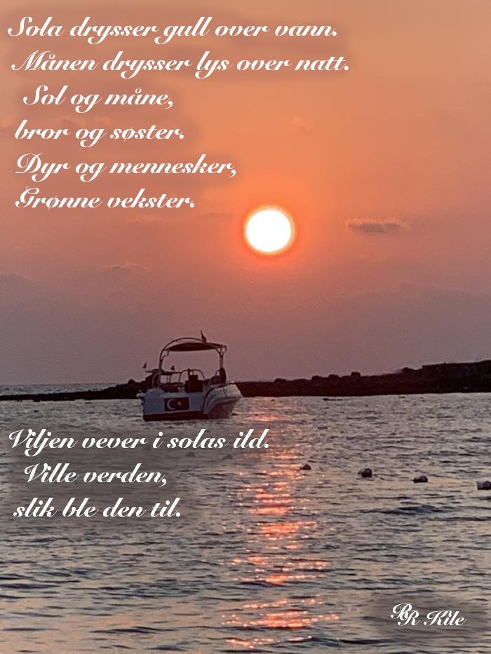 Dikt, det er vilje i sola, spark gjerne i taket, klyp gjerne i skyer, men aldri i livet,  gjerne i vandrestjerna i lek over himmelbuen, ser du ei grind på veien, fremtida kan vente der inne, vers, lyrikk, poesi, versemål, verselinjer, poem, forfatter R.R. Kile