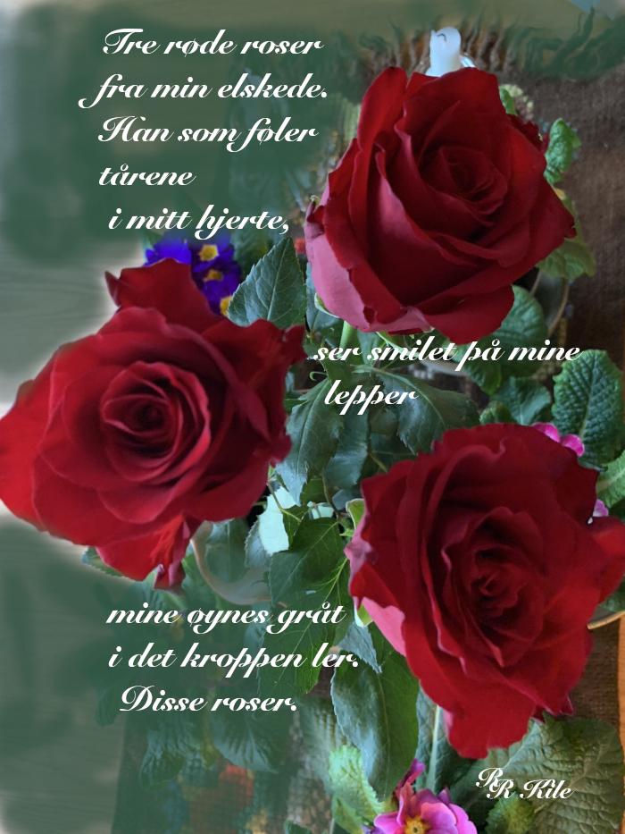 Ordlek og dikt, tre røde roser fra min elskede, ja, altså stjernedrømmer, kapp hue av sparetrolla, ikke til troll og andre monstre skal verden skjenkes, unga våre, det viktigste vi har, vers, poesi,, forfatter R.R. Kile