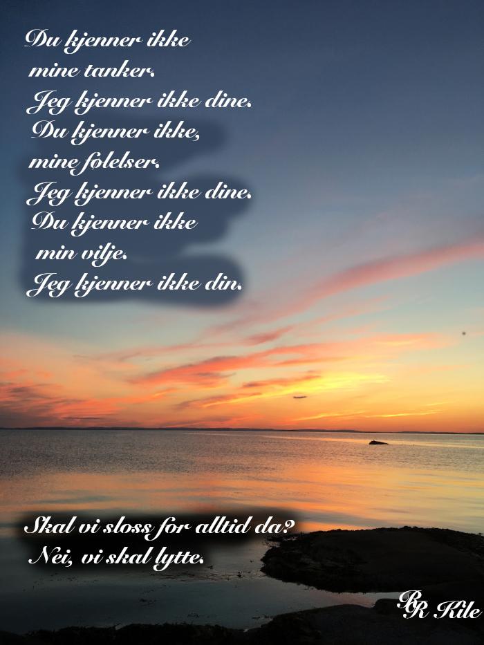 Vers, Skal vi sloss for alltid da? Nei vi skal lytte, måtte lys fra hjerter skinne i mørket,  de mangfoldige steder, poesi, vår mangfoldige verden, å pusse verdens tenner, forfatter R.R. Kile