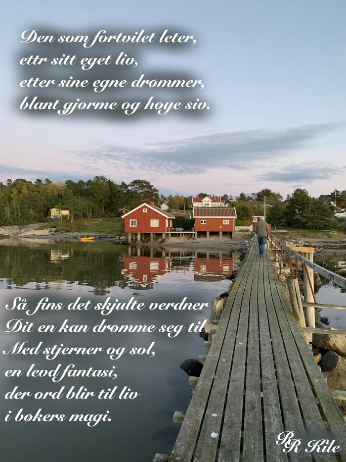 Vers om å lese bøker, Science-Fiction, Norsk-Fantasy , Serien Liber Mundi, Boka Alene, forfatter, R.R. Kile