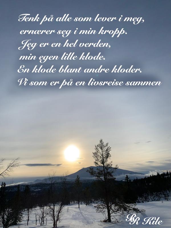 dikt, poesi, poem, ordlek, ordvers, verselinjer, versemål. til havvinders sang. Yin og yan, Så mye som blir åtte,  frukt og grøde, Forfatter R.R. Kile
