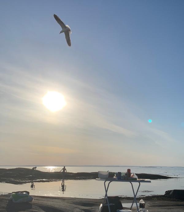 Lyrikk og vers, dikt, poesi, poem, ordlek, ordvers, verselinjer, versemål. til havvinders sang. Yin og yan, flygende tanker, Forfatter R.R. Kile
