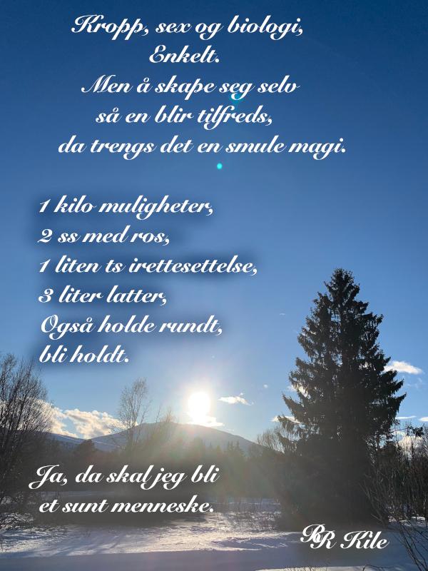 Dikt, Poem, Lyrikk, Ordlek, Verselinjer, Versemål, hyttedrømmer. å drømme en rose, å veve tepper av ord, å skape magi,  kilovis med muligheter, Forfatter R.R. Kile.