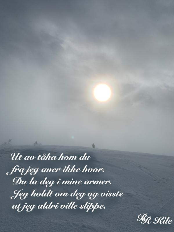 vers, poem, lyrikk, versmål, verselinjer, ordlek, naturglede,  fruktens sødme blir drømt, solkyss mot huden, livet vever i sansers fylde, å søke verdens navle, ut av tåka kom du. Forfatter R.R. Kile