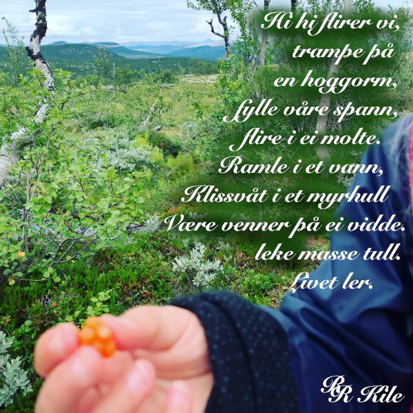 dikt, vers, poem, versemål, verselinjer, ordlek, måkespenst og måkestreker, et biologisk mangfold, flire i ei moltet, forfatter R.R. Kile