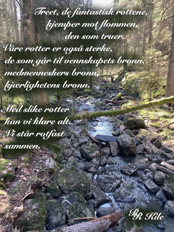 Dikt og Poesi, Vers, Poem,  Ordlek, Verselinjer, Versemål,  Lyrikk, blåveisdrøm, blomstrende gleder, berører hjerter blomstene, å stå rotfast sammen, Forfatter R.R. Kile