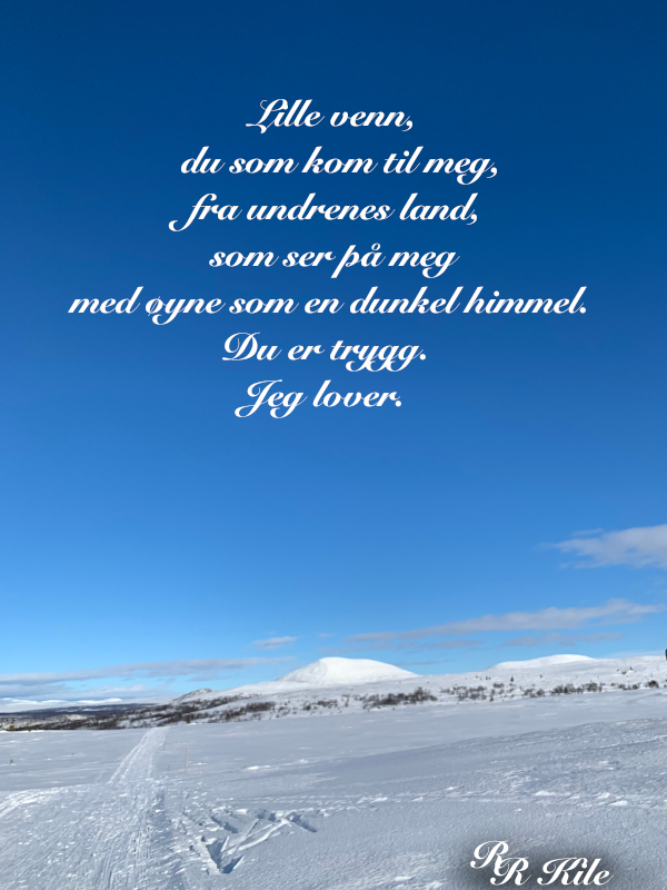 Dikt, Poem, Lyrikk, Ordlek, Verselinjer, Versemål, hyttedrømmer. å drømme en rose, å veve tepper av ord, å skape magi, Forfatter R.R. Kile.