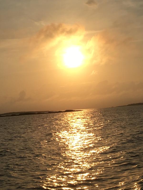 Dikt, vers, poesi, versemål, verselinjer, poem, ordlek, med havsang i kroppen, skal vi danse på regnbuen sammen.En verden av smak i tidløs fylde. å bygge kjærlighet, Forfatter R.R. Kile.