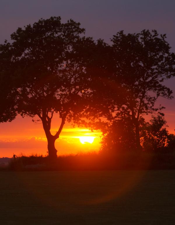 Poem og ord, tåkehav i fløyelsdans, en solnedgang, å danse mobbing under fot og hinke mot en regnbue, ha trollsverd, dikt, vers, forfatter R.R. Kile
