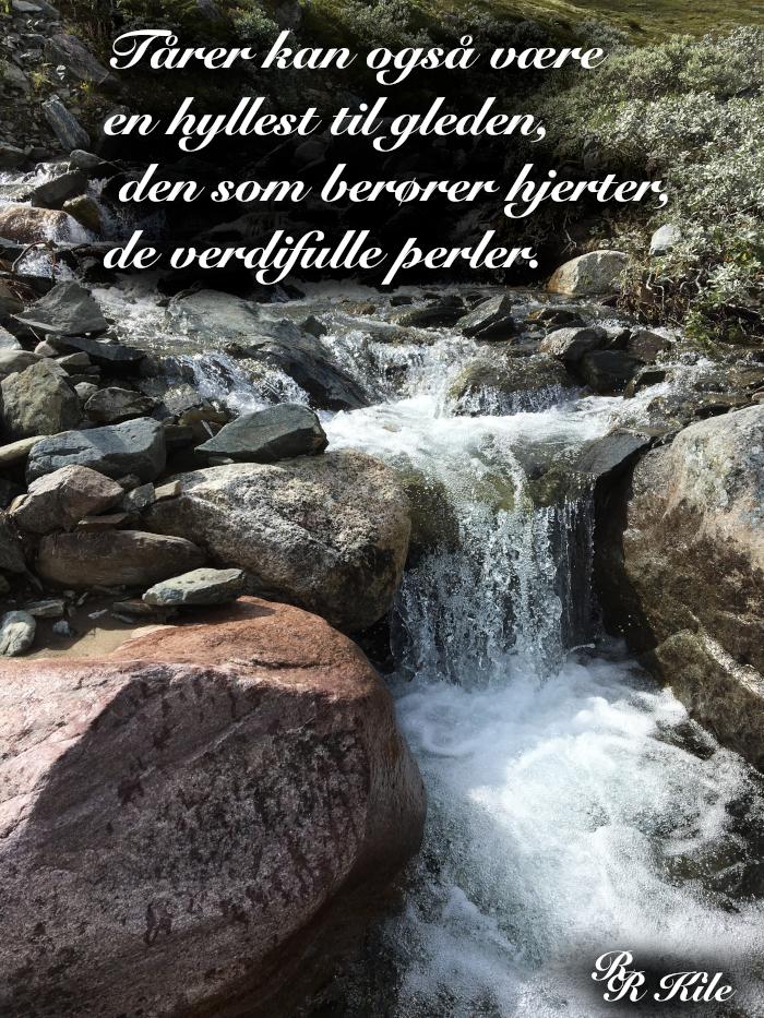 Vers, dikt, poesi, poem, verselinjer, versemål, ordlek, Liber Mundi, verdensboka, å snuble i et bjørkeblad, kan vi ikke bare så frø, å gro litt varme, av vår viljes varme hjerter kan vi tilby håpets nektar, ikke gjem deg i skyggene, de tause stemmer, en hyllest til gleden, forfatter, R.R. Kile