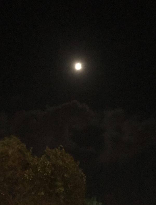 Poesi, soler stråler og skinner så vi ikke ser alle månene, sjøen står i stampe,  verdenborgere er vi, gjennom semulegrøt og havregrøt dit høye tinder faller,  vers, lyrikk, borgere av livet, Forfatter R.R. Kile