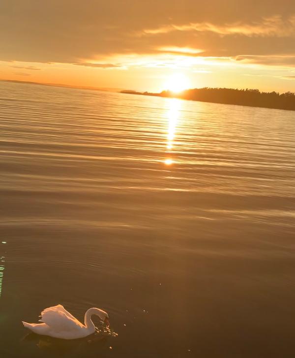 Vers og ordlek, da smiler sola i solnedgangen, frihetens stjerne, der stjerner skinner om dagen, tidshavets bølger, dikt, lyrikk, poesi, forfatter R.R. Kile.
