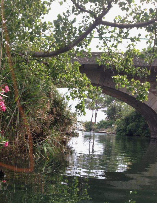 Ordlek og dikt, Nå vandrer hun alene på tårenes bro, kapp hue av sparetrolla, ikke til troll og andre monstre skal verden skjenkes, unga våre, det viktigste vi har, vers, poesi,, forfatter R.R. Kile