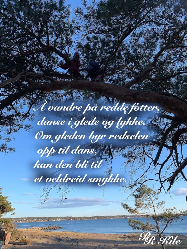Når raseriet stormer, løper angsten og gjemmer seg, det er vilje i sola, spark gjerne i taket, klyp gjerne i skyer, men aldri i livet,  gjerne i vandrestjerna i lek over himmelbuen, ser du ei grind på veien, fremtida kan vente der inne, vers, lyrikk, poesi, versemål, verselinjer, poem, forfatter R.R. Kile