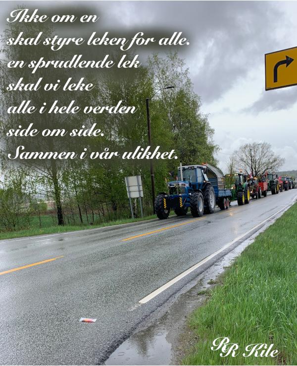 Poesi og ordgleder, ikke om en skal styre leken for alle, mens vi lå i ei livmor, vi kan vel bare svømme gjennom livet i ulik takt, håp i natta, dikt, poesi, forfatter R.R. Kile