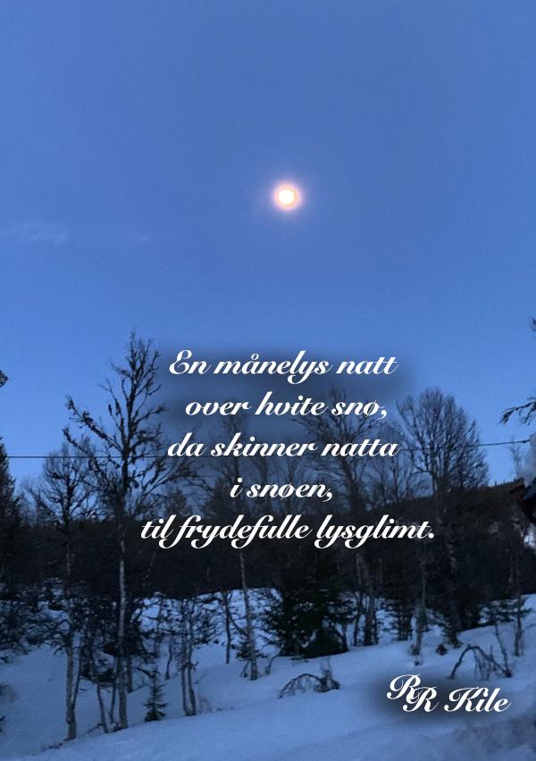 Ordgleder og poesi,en månelys natt,  ærlighet og svik,  glitter fra måkevinger, vers, lyrikk, i våryr begeistreing over dal og fjell, forfatter R.R. KIle.