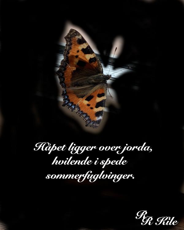 Vers, håpet ligger over jorda i spede sommerfuglvinger, å holde livet i et smykke. gå i spagaten å drømme, mens vi lå i ei livmor, vi kan vel bare svømme gjennom livet i ulik takt, håp i natta, dikt, poesi, forfatter R.R. Kile