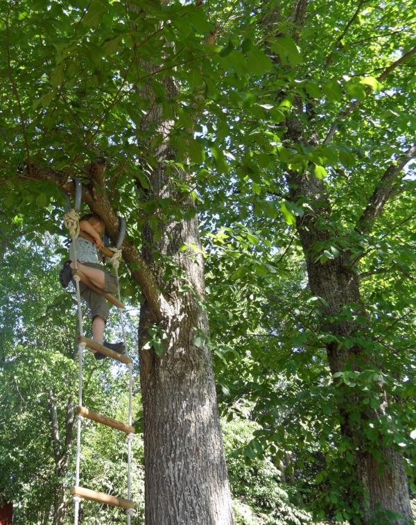 Vers, hva gjør de, disse trærne, skal vi sloss for alltid da? Nei vi skal lytte, måtte lys fra hjerter skinne i mørket,  de mangfoldige steder, poesi, vår mangfoldige verden, å pusse verdens tenner, forfatter R.R. Kile