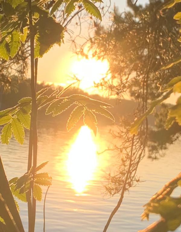 Sola skjuler livets drage, skinne livet i et lys, barndomslandet,  å plante verdens frø, frosten, de forkledde vanndråper, gå du, Dikt, Poesi, Forfatter R.R. Kile.