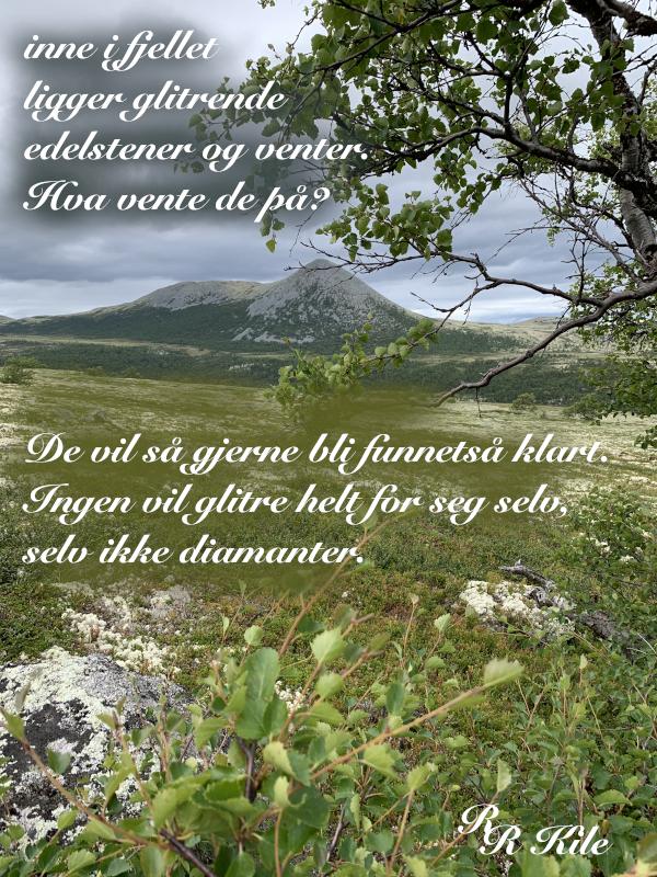 Ordlek og poem, ingen vil glitre helt for seg selv, blomsterprakt er jordas festdrakt, å drømme vann på bakken om til snø, kan jeg ikke bare hoppe med et fiskesprett, som verden drømmer om å bli sett, dikt, vers, himmelild, forfatter R.R. Kile