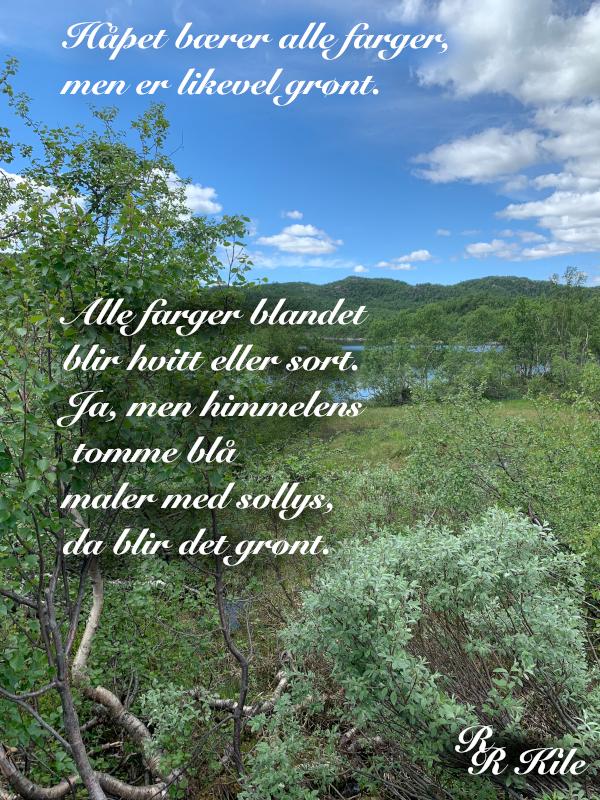 Poem og ordlek, håpet bærer alle farger, mennesker er litt som blomster, å leke med ordene til de berører noens hjerter, vers, poesi, under en ensom stjerne, Forfatter R.R. Kile