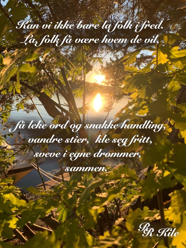 Kan vi ikke bare la folk i fred, Ååskinne livet i et lys, barndomslandet,  å plante verdens frø, frosten, de forkledde vanndråper, gå du, Dikt, Poesi, Forfatter R.R. Kile.