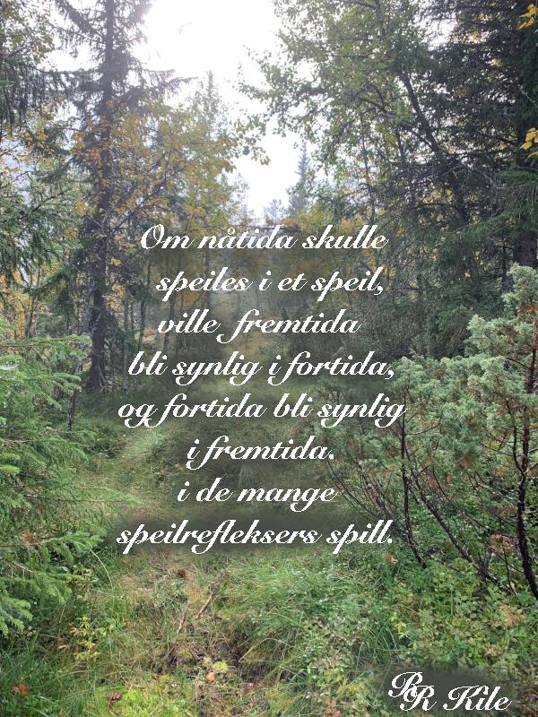 Dikt og verselek, i de mange speilrefleksers spill, de som har kjent kjærlighetens lengsel som en stige i sin kropp, over regnbuens farger i de dypeste slukter, morgendagens lengsel, poesi, lyrikk, Forfatter R.R. Kile.